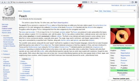 Wikipedia page displayed within Safari 5.